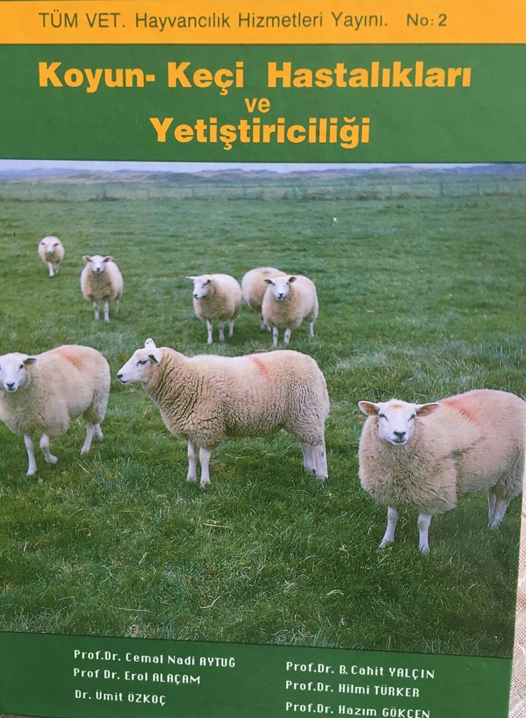 Koyun Keci Hastaliklari ve Yetistiriciligi